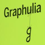 GRAPHUGLIA