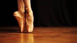 "Concorso idee ""Teatro in Cartella"" - Maddalena Teatro"